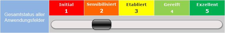 Reifegradanalyse Schieberegler software asset management