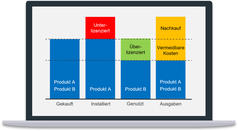 compliance situation Software Audit Hilfestellung